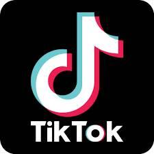 Historia de Tik Tok
