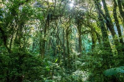 Viajar a Costa Rica es posible