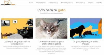 Colaboración para Todoparatugato: ¿Por qué los gatos sueltan tantos pelos?