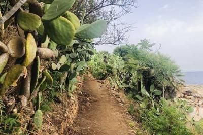 Visitar la Riserva Naturale dello Zingaro