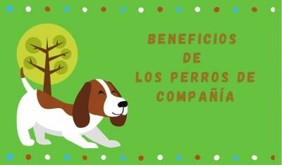Beneficios de los perros como mascotas