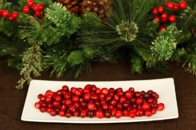Arándano rojo, un remedio natural para la cistitis