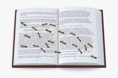 Para salvar el libro... entre todos