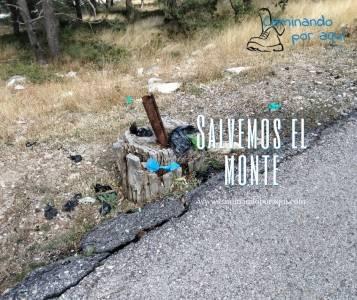Salvemos el monte – Caminando por aqui